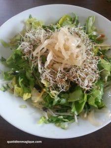 salade fermenté