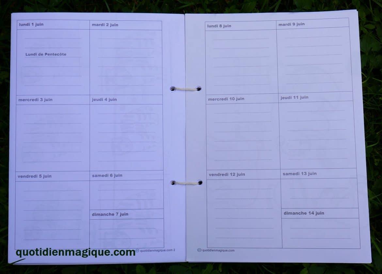 agenda 7 jours colonne