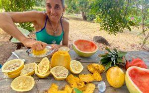 Mimi Jacky Boisset fruits