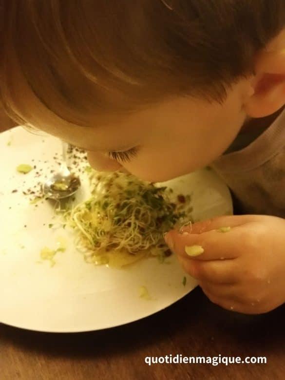 graines germées bébé