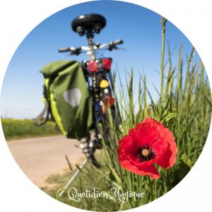 Expédition vélo Quotidien Magique boutique